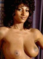 Pam Grier bio picture