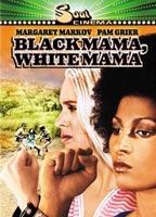 Black Mama, White Mama boxcover