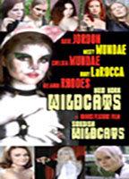 New York Wildcats boxcover