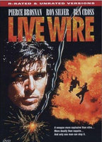 Lisa Eilbacher as Terry O'Neill in Live Wire