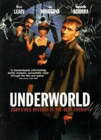 Heidi Schanz as Joyce Alt in Underworld