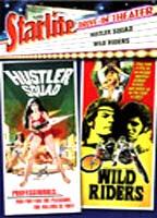 Wild Riders boxcover