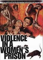 Violence in a Women's Prison boxcover