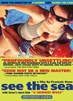 See the Sea boxcover