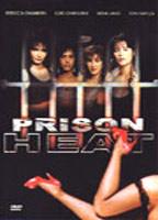 Prison Heat boxcover