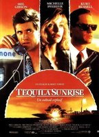 Michelle Pfeiffer as Jo Ann Vallenari in Tequila Sunrise