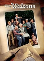 The Waltons boxcover