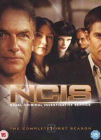 Pauley Perrette as Abby Sciuto in NCIS