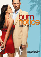 Cindy Taylor as Bonnie in Burn Notice