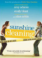 Sunshine Cleaning boxcover