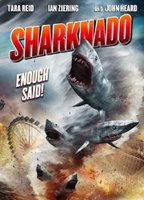 Cassie Scerbo as Nova Clarke in Sharknado