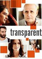 Amy Landecker as Sarah in Transparent